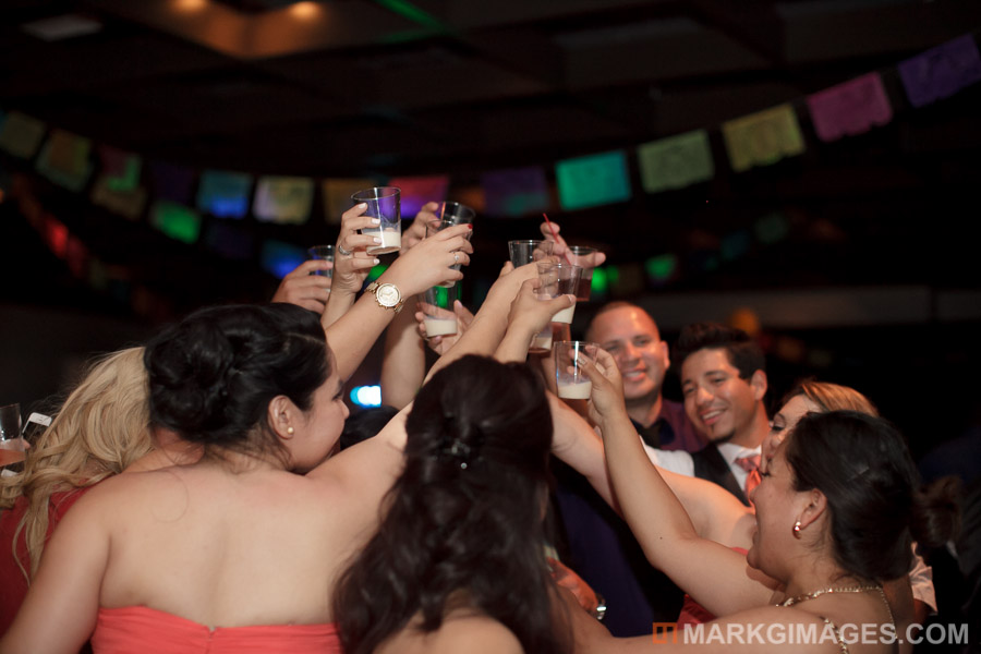 elsa and carlos long beach wedding-115.jpg